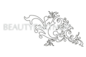 Logo BeautyPartner